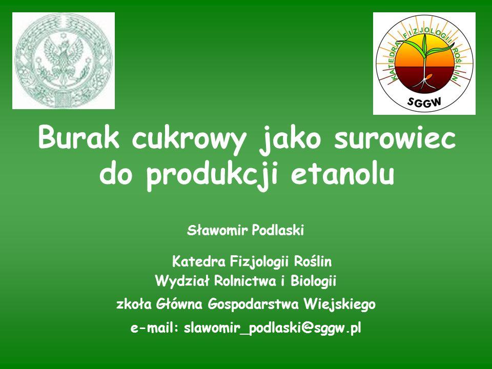 Rodzaje etanolu: - fermentacyjny powstający w wyniku fermentacji surowców zawierających cukry - syntetyczny powstający w wyniku syntezy z etylenu lub węgla Wykorzystanie etanolu: - przemysł - napoje - paliwo UDZIAŁ ETANOLU PALIWOWEGO W PRODUKCJI ETANOLU SIĘGA 80%