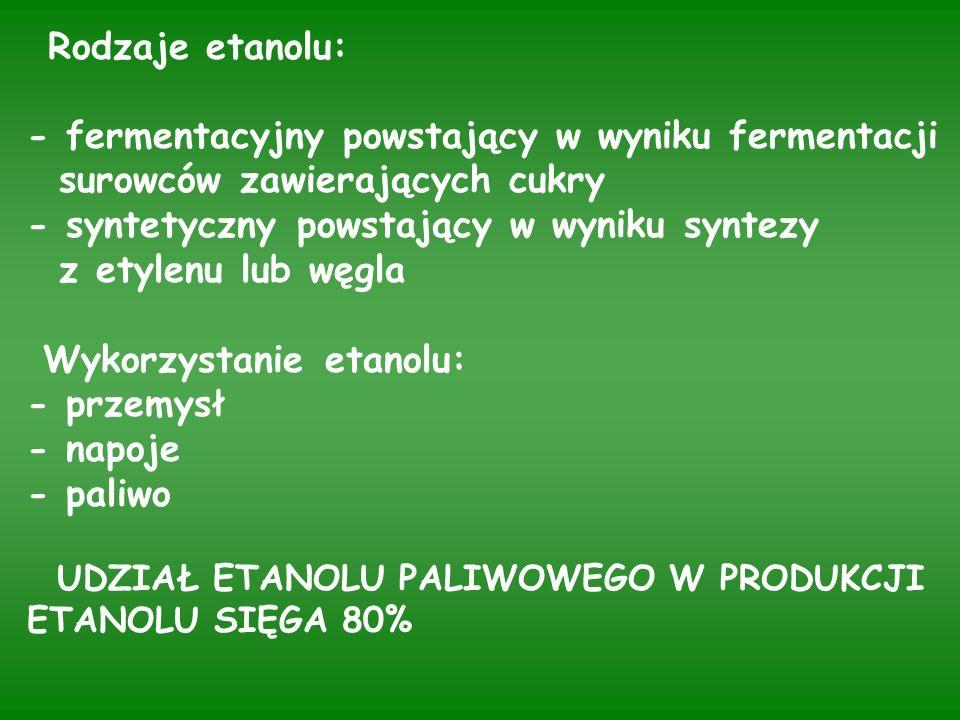 Wydajność produkcji etanolu z różnych roślin uprawnych (Kuś) Roślina Zawartość Wydajność Plon Produkcja Ekwiwalent cukru lub etanolu t/ha etanolu benzyny skrobi (%) (l/t) l/ha (l) Kukurydza Burak cukrowy Ziemniak Żyto 65 16 17 62 417 98 120 390 8,0 45,0 16,0 2,8 3336 4410 1920 1092 2234 2953 1280 730