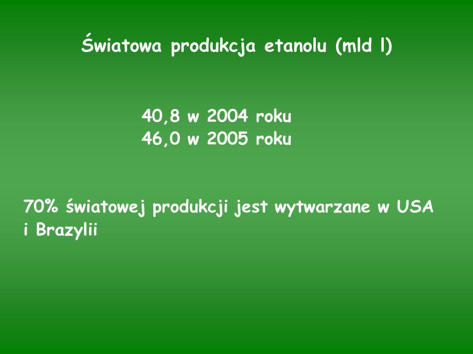 Światowa produkcja etanolu (mld l) 40,8 w 2004 roku 46,0 w 2005 roku 70% światowej produkcji jest wytwarzane w USA i Brazylii