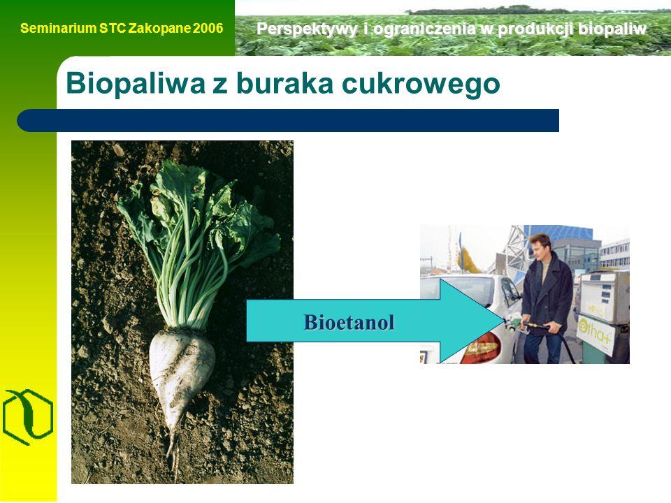 Seminarium STC Zakopane 2006 Perspektywy i ograniczenia w produkcji biopaliw Biopaliwa z buraka cukrowego Bioetanol