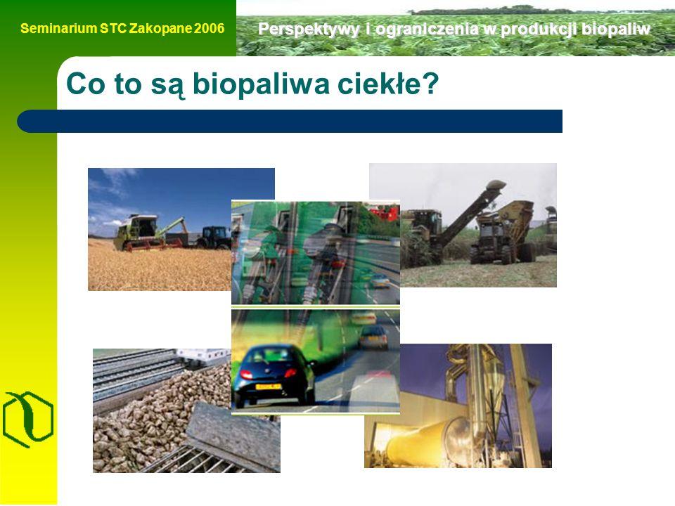 Seminarium STC Zakopane 2006 Perspektywy i ograniczenia w produkcji biopaliw Produkcja bioetanolu - Wzrost cen cukru