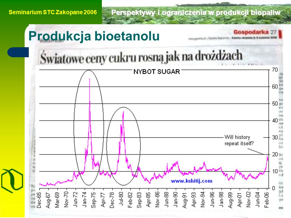 Seminarium STC Zakopane 2006 Perspektywy i ograniczenia w produkcji biopaliw Produkcja bioetanolu