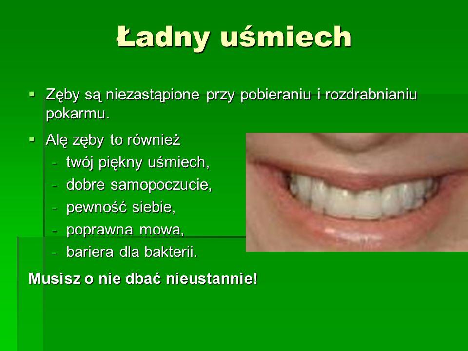 Ładny uśmiech  Zęby są niezastąpione przy pobieraniu i rozdrabnianiu pokarmu.  Alę zęby to również -twój piękny uśmiech, -dobre samopoczucie, -pewno