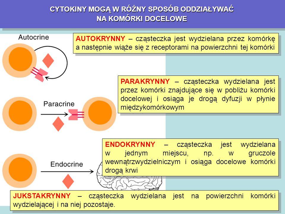 INTERFERONYINTERFERONY DZIAŁANIA DZIAŁANIA NIEPOŻĄDANE Zespół grypopodobny (flu-like syndrom) Złe samopoczucie, brak apetytu, nudności, wymioty i biegunki Działanie toksyczne na układ nerwowy (zawroty głowy, zaburzenia orientacji, depresja, a także padaczka, śpiączka, encefalopatie, parestezje Przejściowe zwiększenie aktywności aminotransferaz, fosfatazy alkalicznej, wzrost stężenia bilirubiny, mocznika i kreatyniny Działanie mielosupresyjne – leukopenia, małopłytkowość i niedokrwistość Objawy Parkinsona, splątania, zaburzenia orientacji, halucynacje Zespół grypopodobny (flu-like syndrom) Złe samopoczucie, brak apetytu, nudności, wymioty i biegunki Działanie toksyczne na układ nerwowy (zawroty głowy, zaburzenia orientacji, depresja, a także padaczka, śpiączka, encefalopatie, parestezje Przejściowe zwiększenie aktywności aminotransferaz, fosfatazy alkalicznej, wzrost stężenia bilirubiny, mocznika i kreatyniny Działanie mielosupresyjne – leukopenia, małopłytkowość i niedokrwistość Objawy Parkinsona, splątania, zaburzenia orientacji, halucynacje