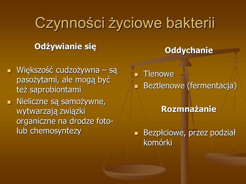 Czynności życiowe bakterii Odżywianie się Większość cudzożywna – są pasożytami, ale mogą być też saprobiontami Większość cudzożywna – są pasożytami, ale mogą być też saprobiontami Nieliczne są samożywne, wytwarzają związki organiczne na drodze foto- lub chemosyntezy Nieliczne są samożywne, wytwarzają związki organiczne na drodze foto- lub chemosyntezy Oddychanie Tlenowe Beztlenowe (fermentacja) Rozmnażanie Bezpłciowe, przez podział komórki
