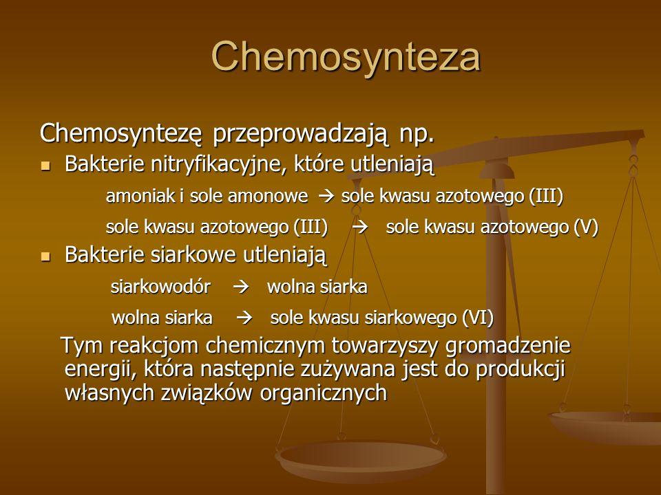 Chemosynteza Chemosyntezę przeprowadzają np. Bakterie nitryfikacyjne, które utleniają Bakterie nitryfikacyjne, które utleniają amoniak i sole amonowe