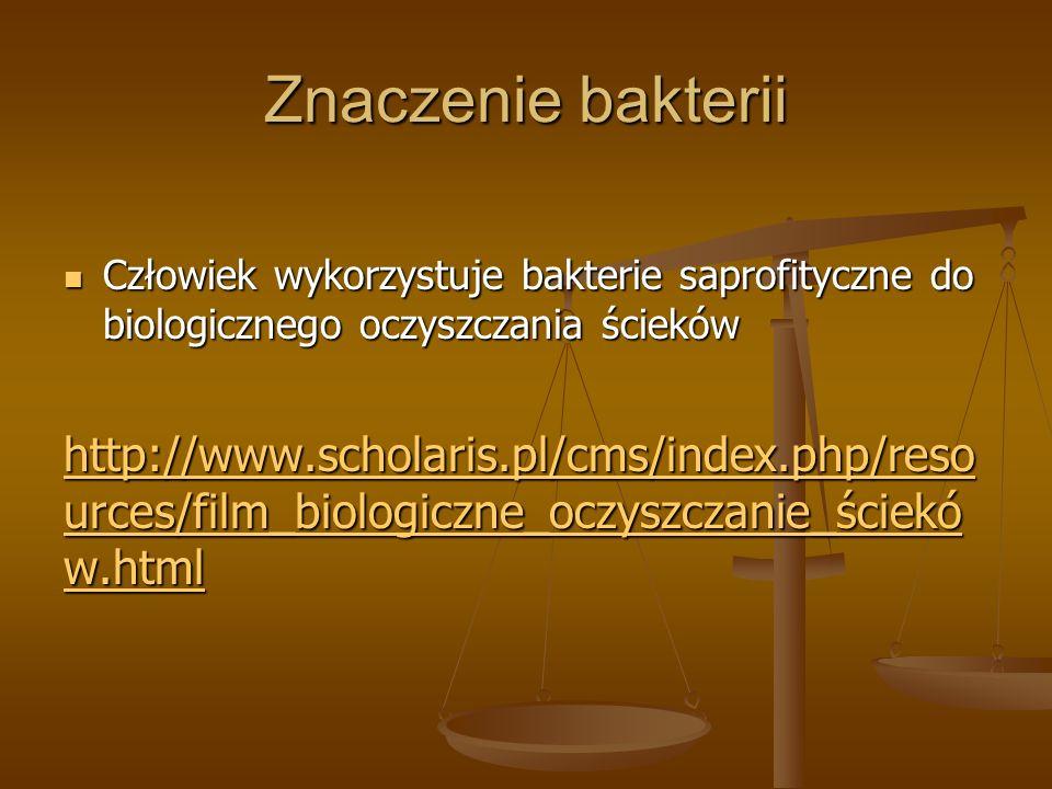 Znaczenie bakterii Człowiek wykorzystuje bakterie saprofityczne do biologicznego oczyszczania ścieków Człowiek wykorzystuje bakterie saprofityczne do biologicznego oczyszczania ścieków http://www.scholaris.pl/cms/index.php/reso urces/film_biologiczne_oczyszczanie_ściekó w.html http://www.scholaris.pl/cms/index.php/reso urces/film_biologiczne_oczyszczanie_ściekó w.html