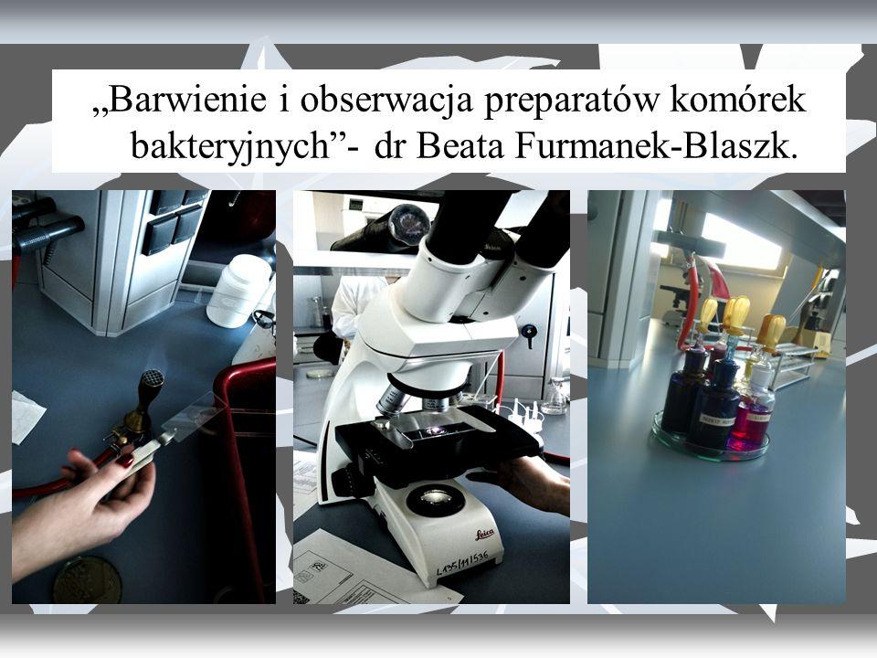 """""""Barwienie i obserwacja preparatów komórek bakteryjnych - dr Beata Furmanek-Blaszk."""