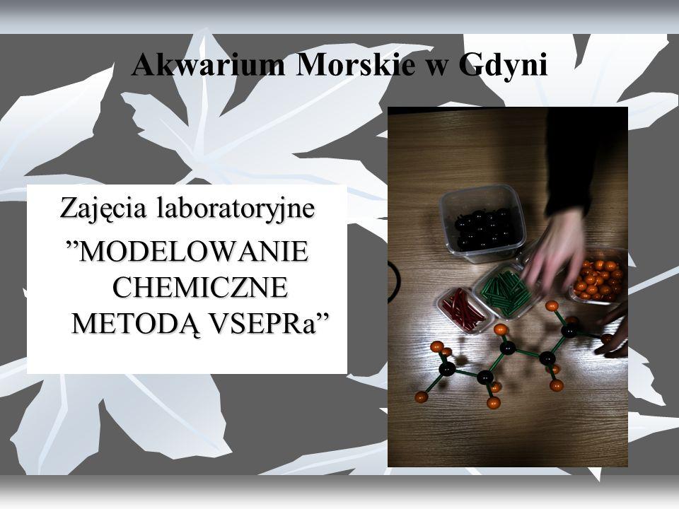Akwarium Morskie w Gdyni Zajęcia laboratoryjne MODELOWANIE CHEMICZNE METODĄ VSEPRa