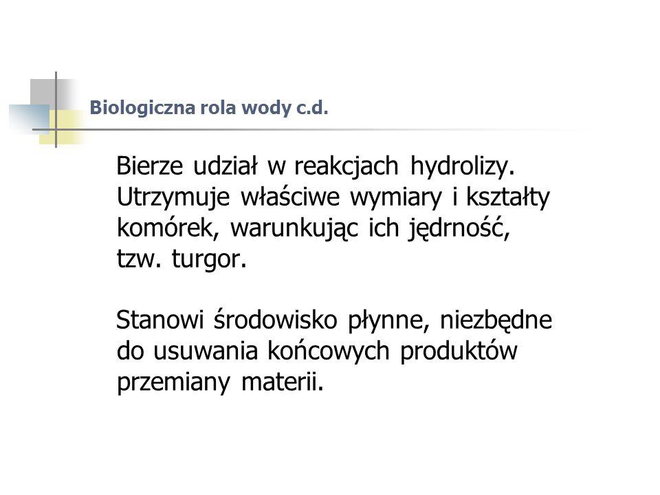 Biologiczna rola wody c.d. Bierze udział w reakcjach hydrolizy.