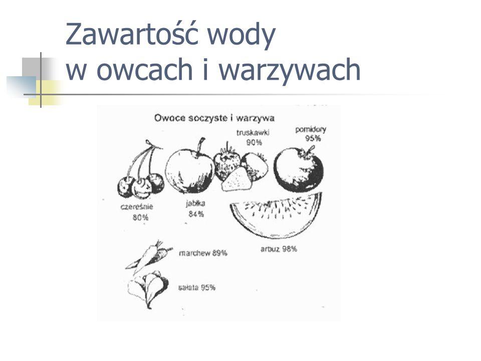 Zawartość wody w owcach i warzywach