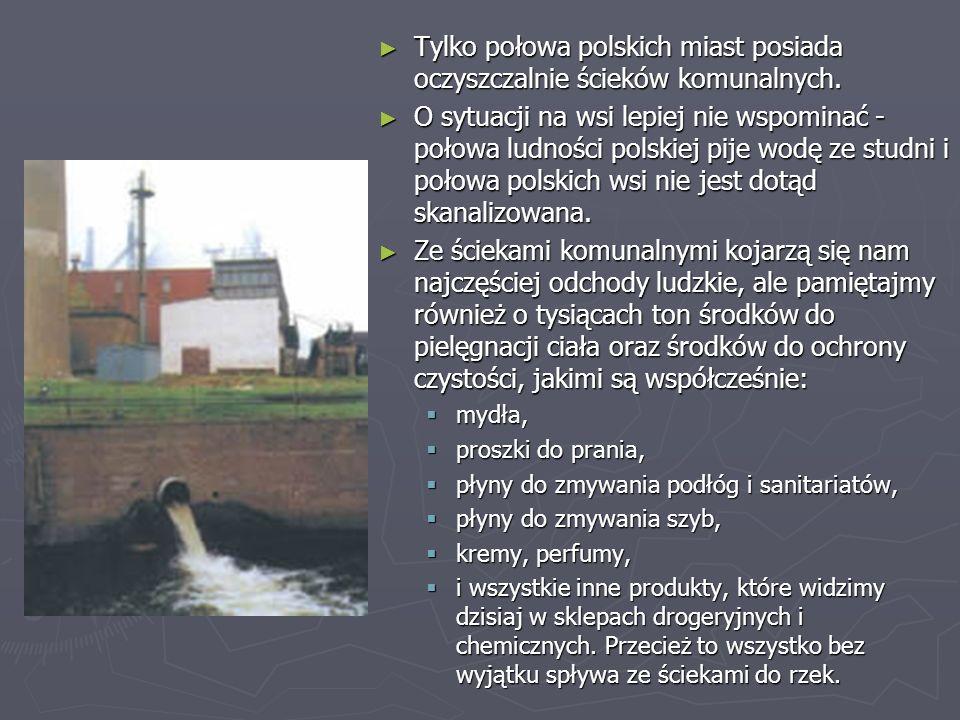 ► Tylko połowa polskich miast posiada oczyszczalnie ścieków komunalnych. ► O sytuacji na wsi lepiej nie wspominać - połowa ludności polskiej pije wodę