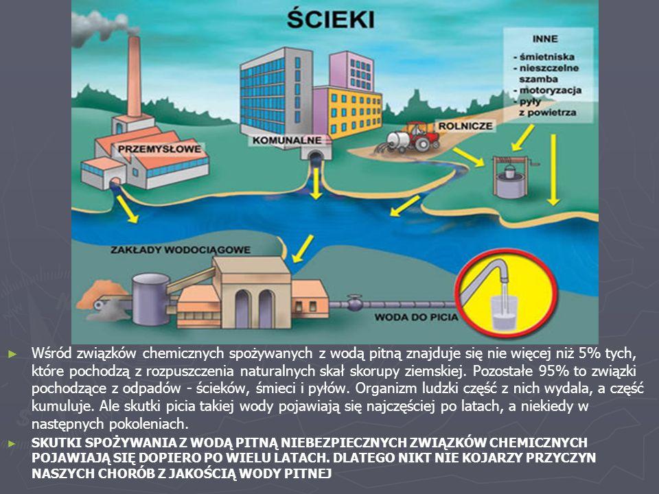 ► ► Wśród związków chemicznych spożywanych z wodą pitną znajduje się nie więcej niż 5% tych, które pochodzą z rozpuszczenia naturalnych skał skorupy z