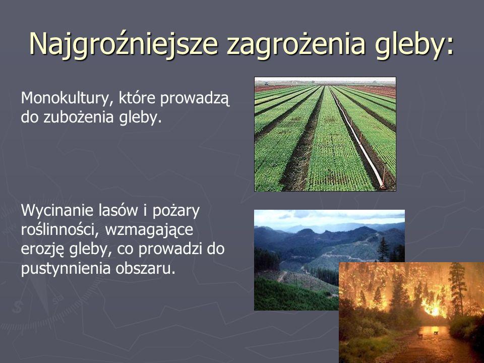 Najgroźniejsze zagrożenia gleby: Monokultury, które prowadzą do zubożenia gleby. Wycinanie lasów i pożary roślinności, wzmagające erozję gleby, co pro