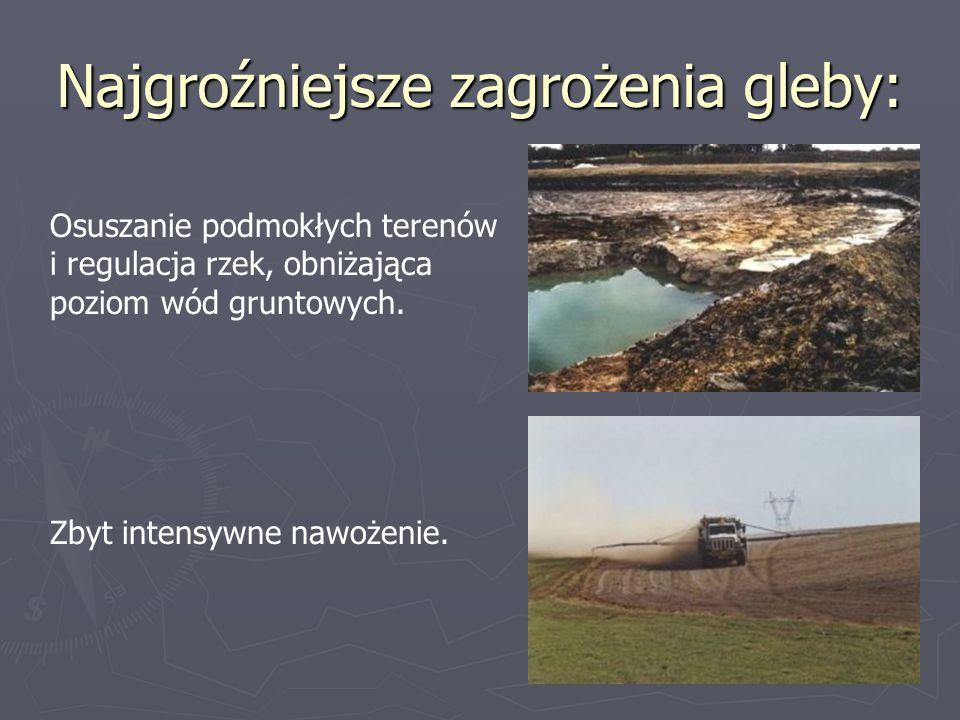 Najgroźniejsze zagrożenia gleby: Osuszanie podmokłych terenów i regulacja rzek, obniżająca poziom wód gruntowych. Zbyt intensywne nawożenie.