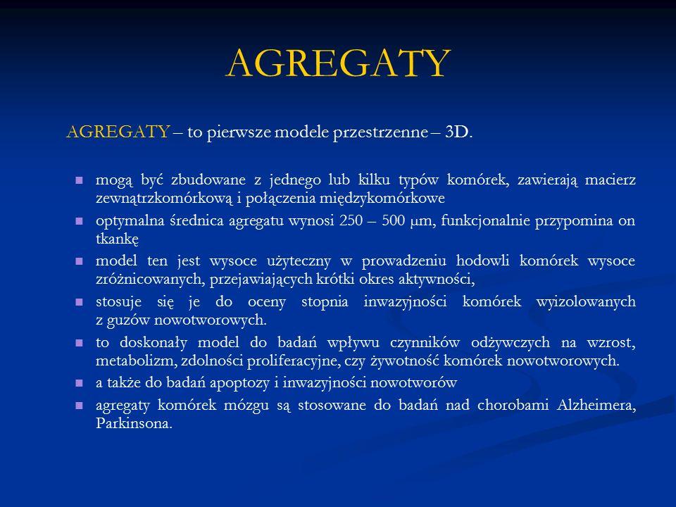 AGREGATY AGREGATY – to pierwsze modele przestrzenne – 3D. mogą być zbudowane z jednego lub kilku typów komórek, zawierają macierz zewnątrzkomórkową i