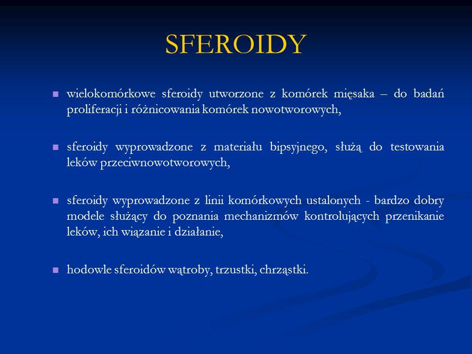 SFEROIDY wielokomórkowe sferoidy utworzone z komórek mięsaka – do badań proliferacji i różnicowania komórek nowotworowych, sferoidy wyprowadzone z mat