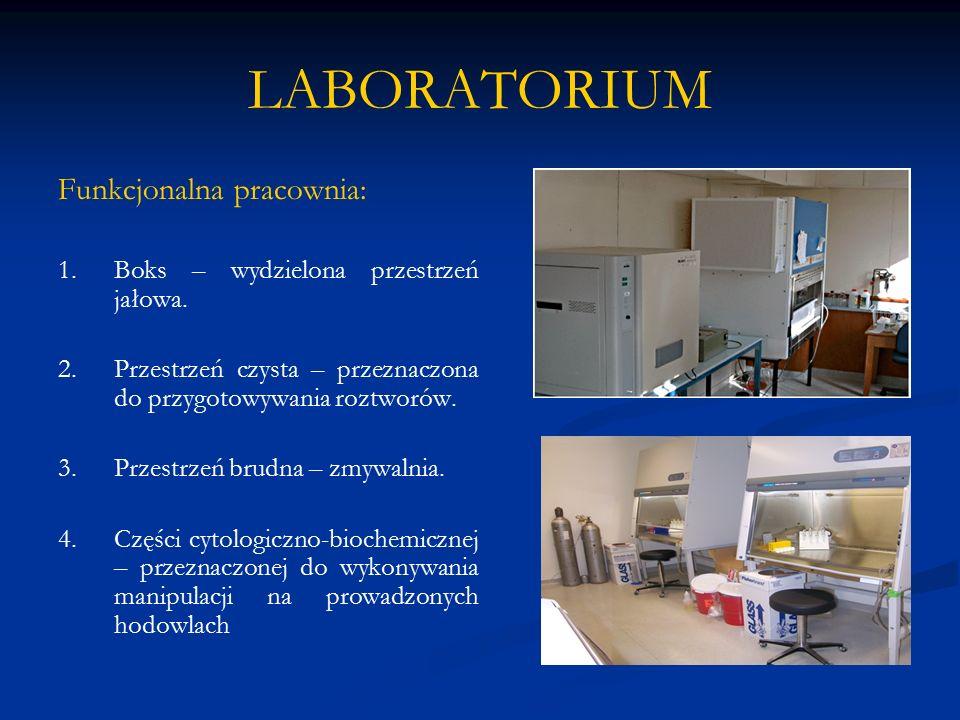 LABORATORIUM Funkcjonalna pracownia: 1.Boks – wydzielona przestrzeń jałowa. 2.Przestrzeń czysta – przeznaczona do przygotowywania roztworów. 3.Przestr