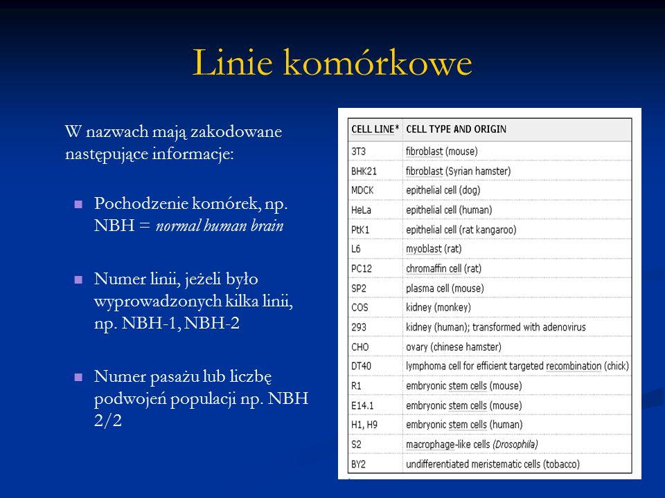 Linie komórkowe W nazwach mają zakodowane następujące informacje: Pochodzenie komórek, np. NBH = normal human brain Numer linii, jeżeli było wyprowadz