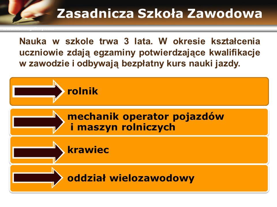 www.themegallery.com Zasadnicza Szkoła Zawodowa Nauka w szkole trwa 3 lata. W okresie kształcenia uczniowie zdają egzaminy potwierdzające kwalifikacje