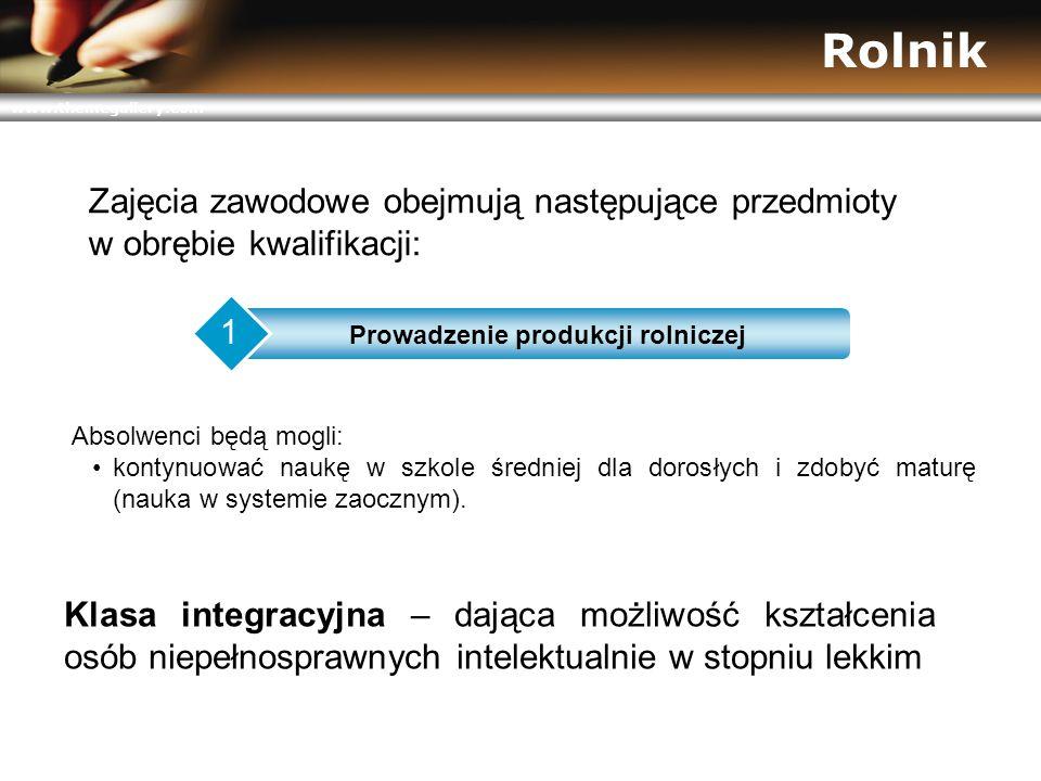 www.themegallery.com Rolnik Prowadzenie produkcji rolniczej 1 Klasa integracyjna – dająca możliwość kształcenia osób niepełnosprawnych intelektualnie w stopniu lekkim Absolwenci będą mogli: kontynuować naukę w szkole średniej dla dorosłych i zdobyć maturę (nauka w systemie zaocznym).
