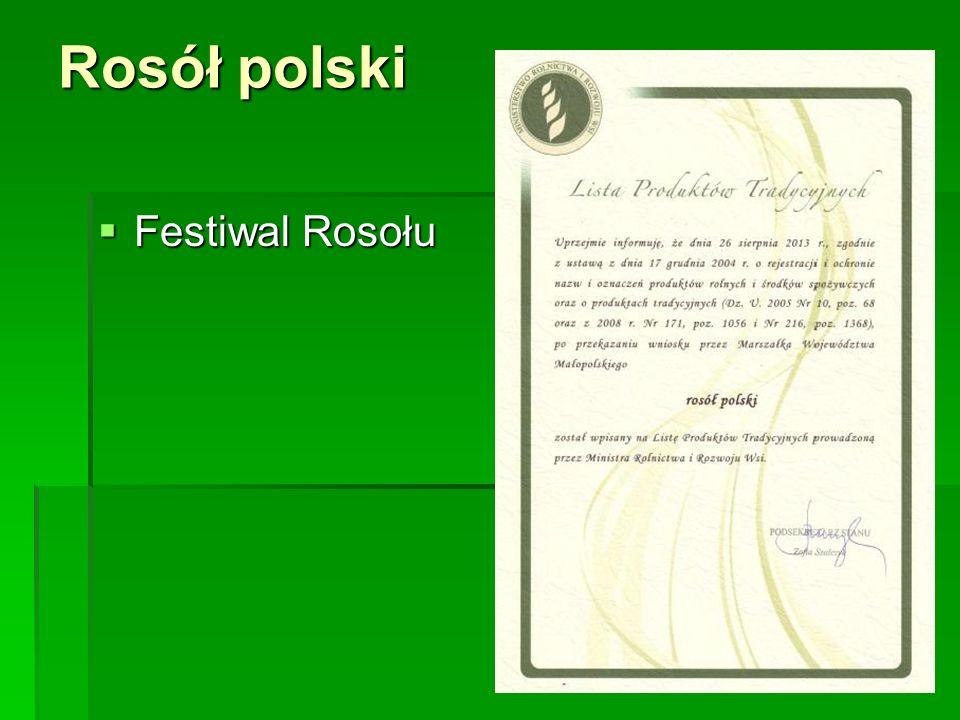 Rosół polski  Festiwal Rosołu