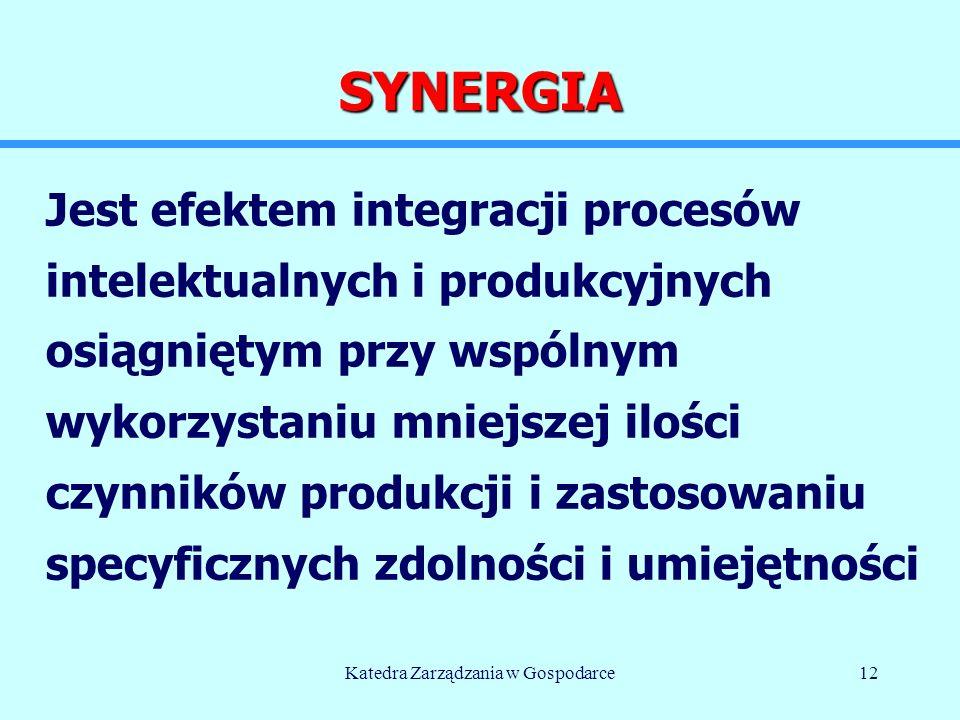 Katedra Zarządzania w Gospodarce12 SYNERGIA Jest efektem integracji procesów intelektualnych i produkcyjnych osiągniętym przy wspólnym wykorzystaniu mniejszej ilości czynników produkcji i zastosowaniu specyficznych zdolności i umiejętności © M.