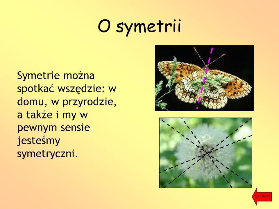 O symetrii Symetrie można spotkać wszędzie: w domu, w przyrodzie, a także i my w pewnym sensie jesteśmy symetryczni.