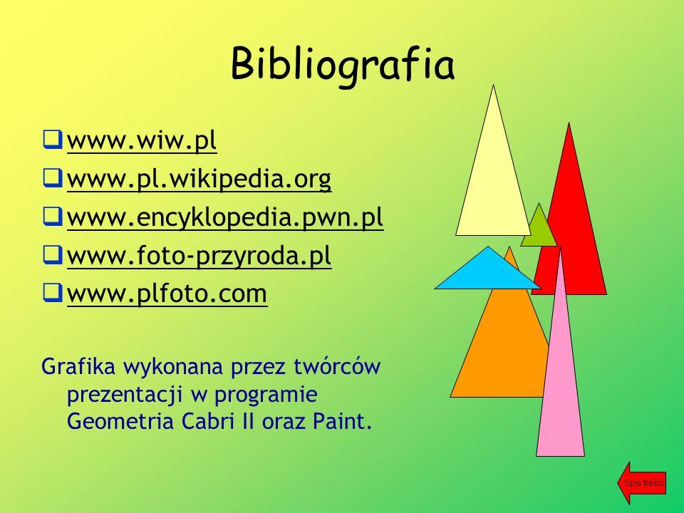 Bibliografia  www.wiw.pl www.wiw.pl  www.pl.wikipedia.org www.pl.wikipedia.org  www.encyklopedia.pwn.pl www.encyklopedia.pwn.pl  www.foto-przyroda.pl www.foto-przyroda.pl  www.plfoto.com www.plfoto.com Grafika wykonana przez twórców prezentacji w programie Geometria Cabri II oraz Paint.