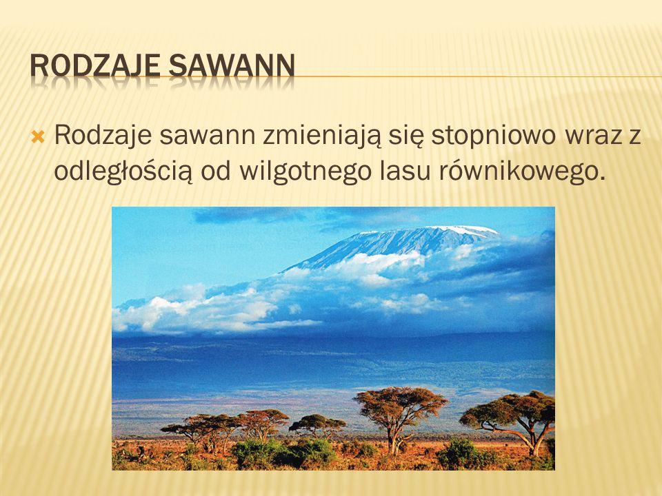  Rodzaje sawann zmieniają się stopniowo wraz z odległością od wilgotnego lasu równikowego.