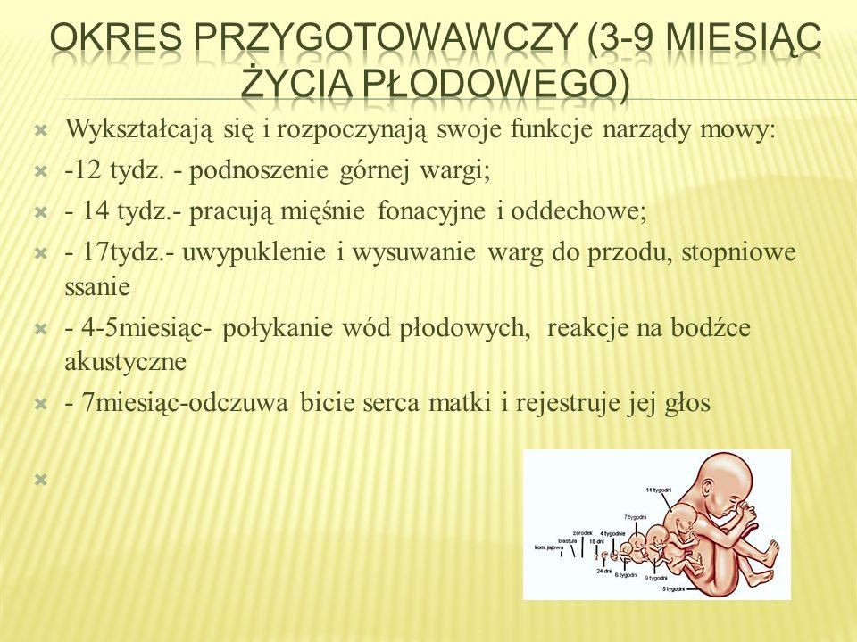  - dziecko powinno wymawiać głoski tylnojęzykowe: [k, g, x],  - przedniojezykowo-zebowe dentalizowane [s, z, c, dz],  - głoski przedniojezykowo- dziąsłowe [sz, ż, cz, dż] często jeszcze są zastępowane przez głoski [s, z, c, dz]- wymowa normatywna,  - możliwa jest w tym wieku wymowa głoski [r] jako /l/ lub [lr]- jedno uderzeniowo,