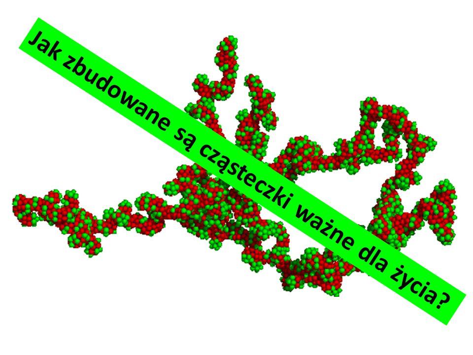 Jak zbudowane są cząsteczki ważne dla życia?