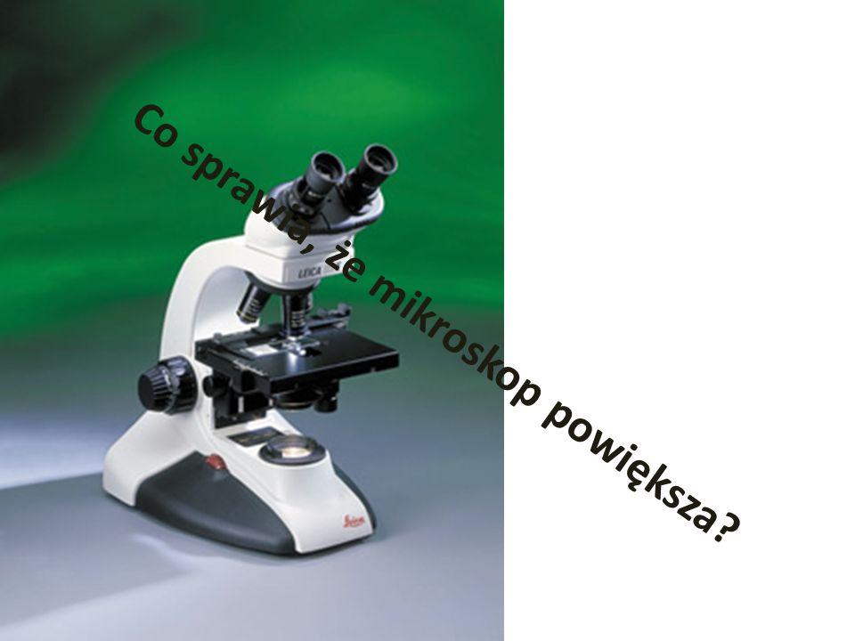 Co sprawia, że mikroskop powiększa?