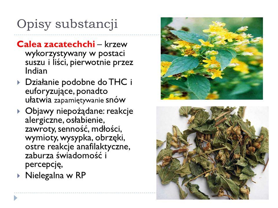 Opisy substancji Calea zacatechchi – krzew wykorzystywany w postaci suszu i liści, pierwotnie przez Indian  Działanie podobne do THC i euforyzujące, ponadto ułatwia zapamiętywanie snów  Objawy niepożądane: reakcje alergiczne, osłabienie, zawroty, senność, mdłości, wymioty, wysypka, obrzęki, ostre reakcje anafilaktyczne, zaburza świadomość i percepcję,  Nielegalna w RP