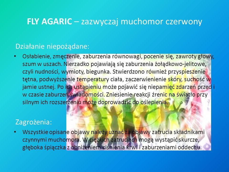 FLY AGARIC – zazwyczaj muchomor czerwony Działanie niepożądane: Osłabienie, zmęczenie, zaburzenia równowagi, pocenie się, zawroty głowy, szum w uszach.