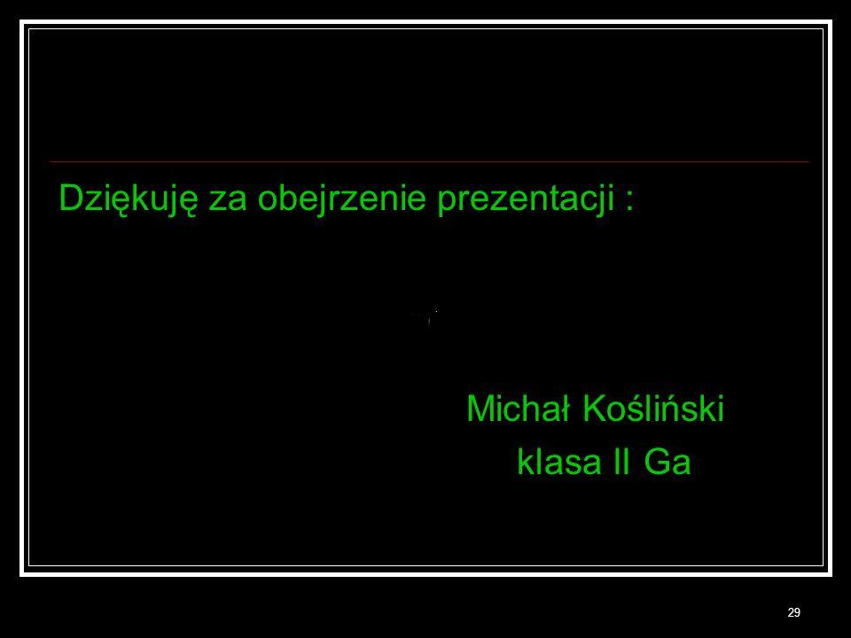 29 Dziękuję za obejrzenie prezentacji : Michał Kośliński klasa II Ga