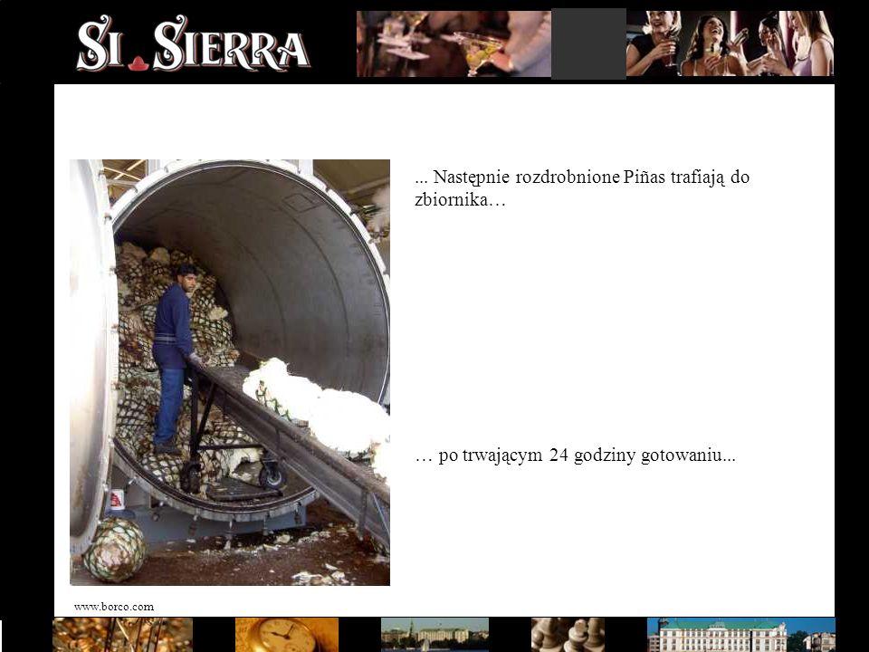 www.borco.com... Następnie rozdrobnione Piñas trafiają do zbiornika… … po trwającym 24 godziny gotowaniu...