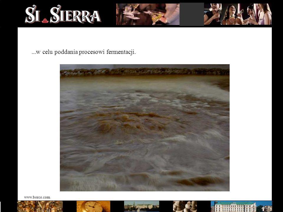 www.borco.com...w celu poddania procesowi fermentacji.