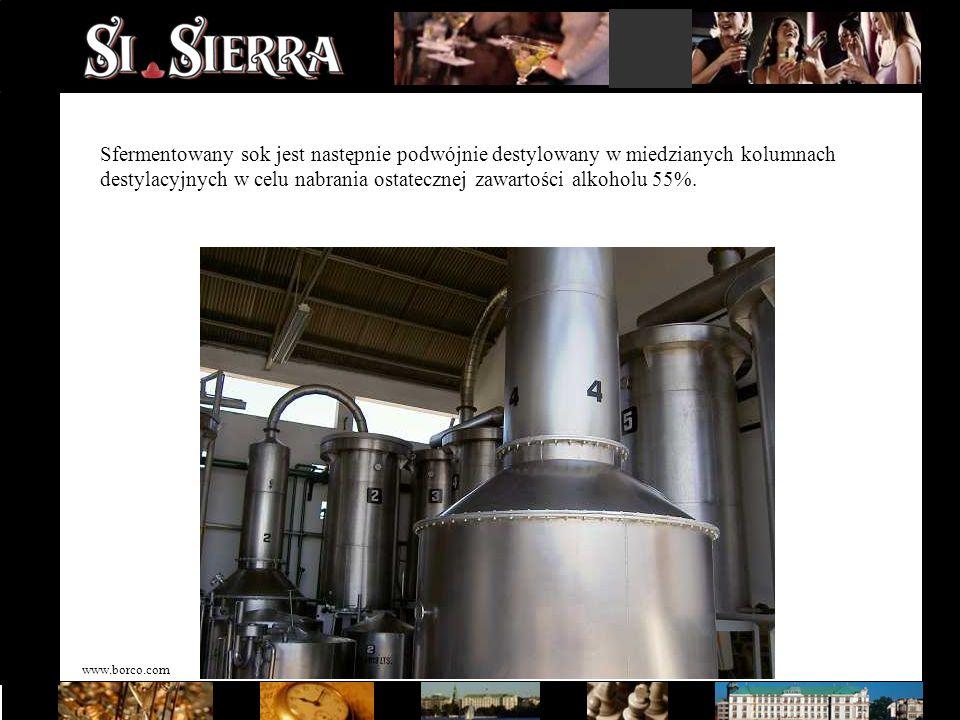 www.borco.com Sfermentowany sok jest następnie podwójnie destylowany w miedzianych kolumnach destylacyjnych w celu nabrania ostatecznej zawartości alk