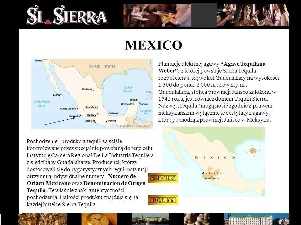 """MEXICO Plantacje błękitnej agawy """"Agave Tequilana Weber"""", z której powstaje Sierra Tequila rozpościerają się wokół Guadalahary na wysokości 1 500 do p"""