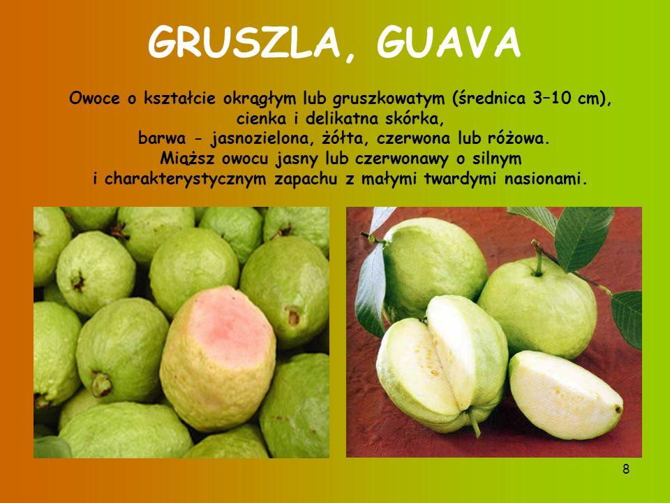 7 PITAJA Pitaja (Dragon Fruit ) jest owocem pewnej odmiany kaktusa.