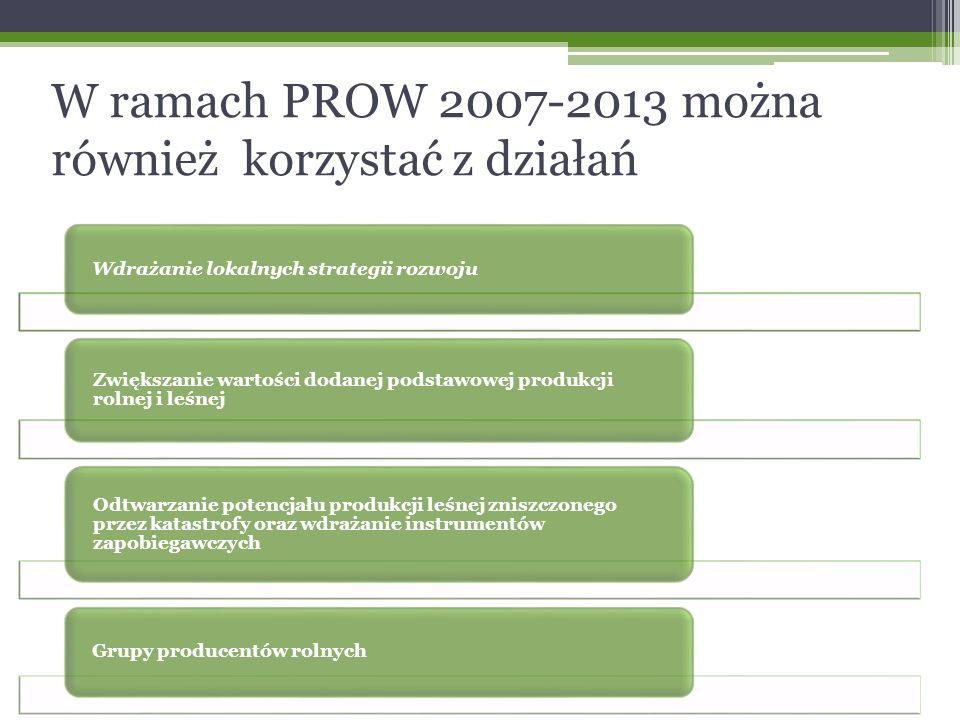 W ramach PROW 2007-2013 można również korzystać z działań Wdrażanie lokalnych strategii rozwoju Zwiększanie wartości dodanej podstawowej produkcji rolnej i leśnej Odtwarzanie potencjału produkcji leśnej zniszczonego przez katastrofy oraz wdrażanie instrumentów zapobiegawczych Grupy producentów rolnych