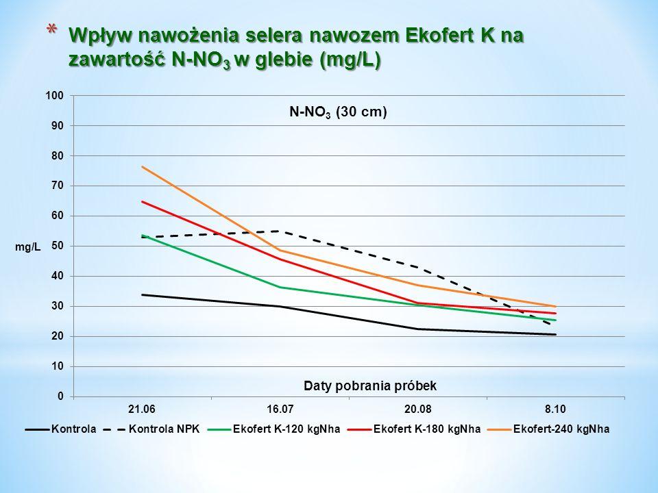 * Wpływ nawożenia selera nawozem Ekofert K na zawartość N-NO 3 w glebie (mg/L)