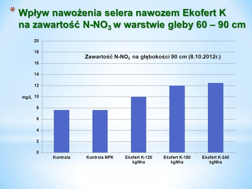 * Wpływ nawożenia selera nawozem Ekofert K na zawartość N-NO 3 w warstwie gleby 60 – 90 cm