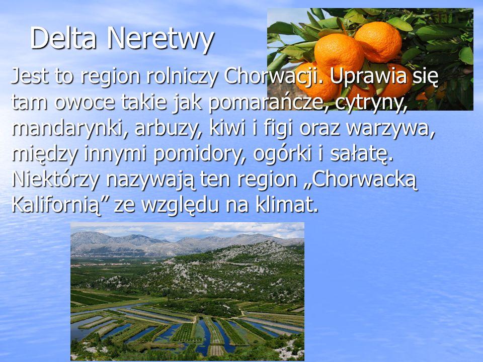 Delta Neretwy Jest to region rolniczy Chorwacji. Uprawia się tam owoce takie jak pomarańcze, cytryny, mandarynki, arbuzy, kiwi i figi oraz warzywa, mi