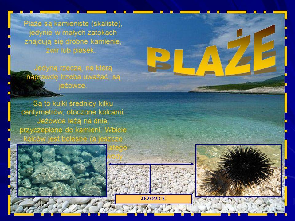 Plaże są kamieniste (skaliste), jedynie w małych zatokach znajdują się drobne kamienie, żwir lub piasek.