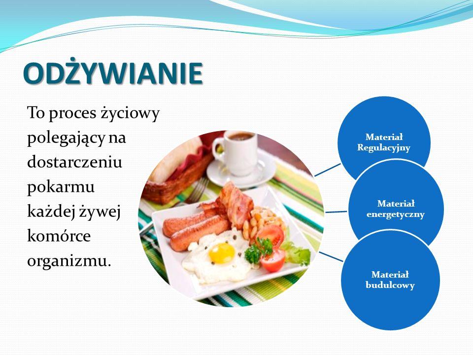 ODŻYWIANIE To proces życiowy polegający na dostarczeniu pokarmu każdej żywej komórce organizmu.