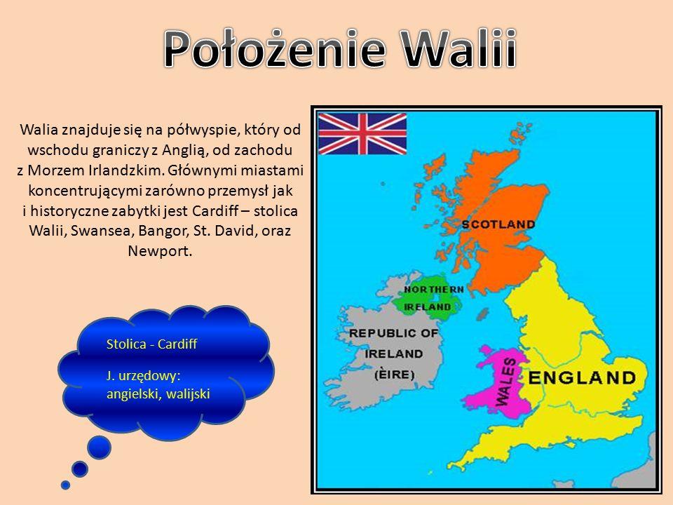 """Polska nazwa jest spolszczoną wersją angielskiej nazwy Wales, która jest germańskim egzonimem pochodzącym od germańskiego słowa """"Walha , które oznacza nieznajomego lub cudzoziemca."""