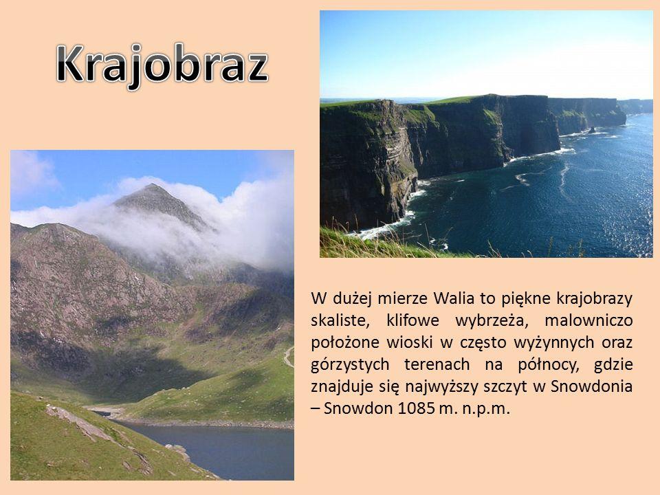 Walia znajduje się na półwyspie, który od wschodu graniczy z Anglia, od zachodu z Morzem Irlandzkim.