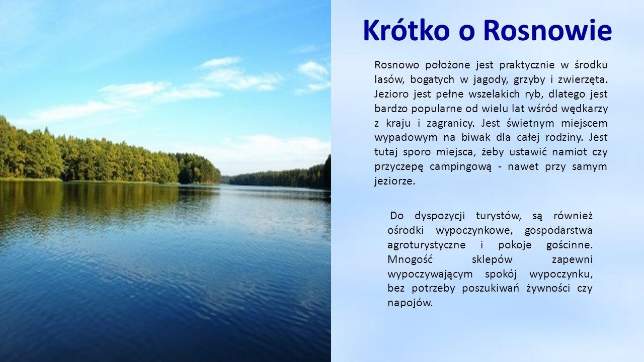 Krótko o Rosnowie Rosnowo położone jest praktycznie w środku lasów, bogatych w jagody, grzyby i zwierzęta. Jezioro jest pełne wszelakich ryb, dlatego